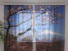 Šifoon-fotokardin Fuji 240x220 cm ED-100006