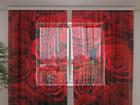 Šifoon-fotokardin Roses 2, 240x220 cm ED-100008
