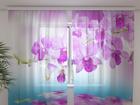 Šifoon-fotokardin Orchid vivian 240x220 cm ED-100147