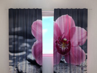 Läbipaistev kardin Orchid tenderness 240x220 cm ED-100462