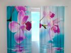 Läbipaistev kardin Skyblue orchids 240x220 cm ED-100477