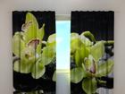Läbipaistev kardin Citreous orchids 240x220 cm ED-100490