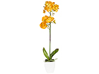 Kunstlill Kollane orhidee h75 cm EV-101762