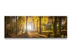 Seinapilt Wald 120x40 cm ED-104982