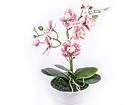 Kunstlill Roosa kirju orhidee h30 cm EV-106492