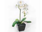Kunstlill Valge orhidee h42 cm EV-106495