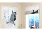 Poolläbipaistev roomakardin African Horses 1 60x60 cm ED-108444
