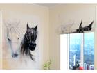 Pimendav roomakardin African Horses 1 60x60 cm ED-108450