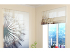 Poolläbipaistev roomakardin Amazing Dandelion