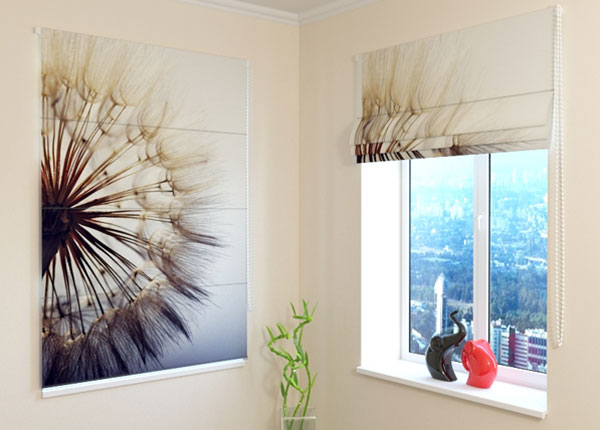 Pimendav roomakardin Amazing Dandelion