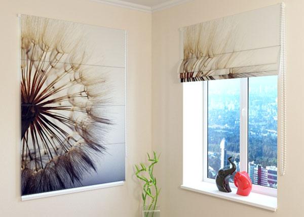 Pimendav roomakardin Amazing Dandelion 100x120 cm ED-108464