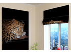 Pimendav roomakardin Cheetah Eyes