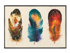Vaip Feathers 50x75 cm A5-108623