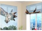 Poolläbipaistev roomakardin Girafe 60x60 cm ED-108732