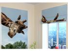 Pimendav roomakardin Girafe