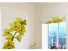 Pimendav roomakardin Light Green Orchid 60x60 cm ED-108913