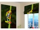 Pimendav roomakardin Little Frog 100x120 cm ED-108929