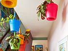 Istutuspottide komplekt Keter Rainbow Planter, 3 tk TE-109004