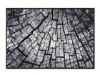 Vaip Timber 50x75 cm A5-109347