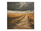 Seinapilt puidul Pathway Through The Dunes