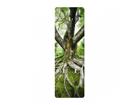 Seinanagi Old tree 139x46 cm ED-113702