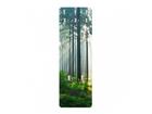 Seinanagi Enlightened Forest 139x46 cm ED-113710