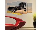 Viieosaline seinapilt Horse I, 100x60 cm ED-116570