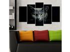 Viieosaline seinapilt Cats 100x60 cm ED-116688