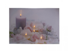 LED pilt Candles & Rose Blossom