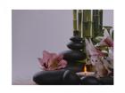 LED pilt Flowers & Pebbles 30x40 cm ED-117174