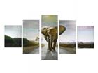 Viieosaline seinapilt Elephant I 160x80 cm ED-117473