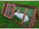 Küülikupuur Rabbit 2 TN-118452