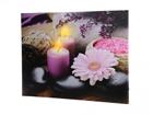 LED pilt Gerbera Blossom