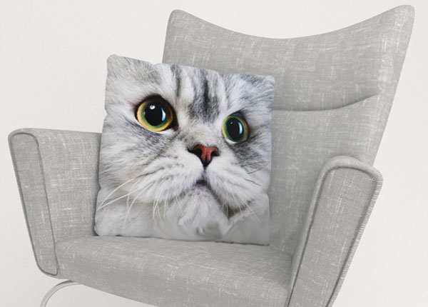 Dekoratiivpadjapüür Gray Cat 45x45 cm ED-123862