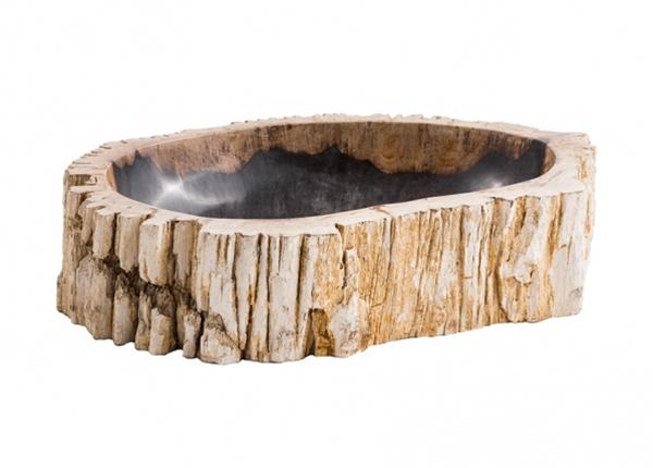 Kivistunud puidust valamu GM-124566