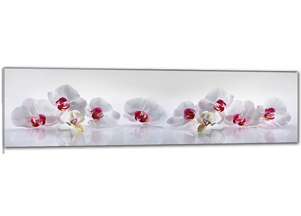 Klaaspilt Orchid 115x30 cm QA-124765