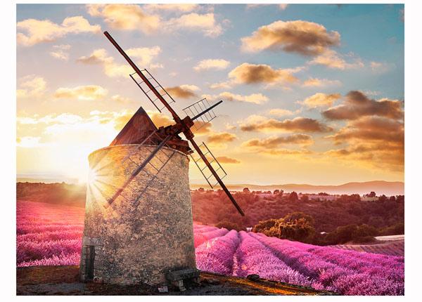 Pilt France Windmill 113x85 cm QA-124771