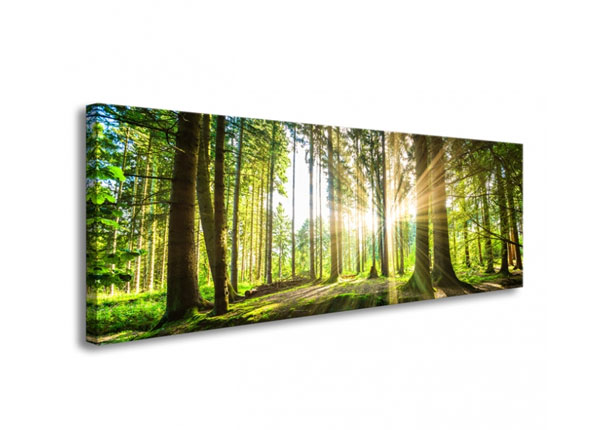 Seinapilt Forest in backlight 120x40 cm ED-126285