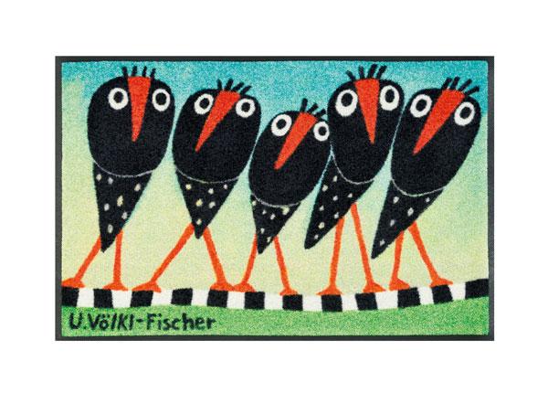 Vaip Schräge Vögel 50x75 cm A5-128253
