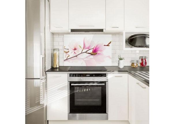 Fotoklaas, köögi tagasein Delicate Magnolia Branch 40x60 cm