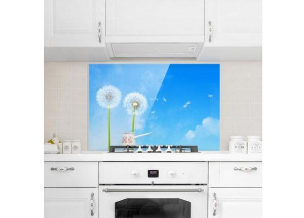 Fotoklaas, köögi tagasein Flying Seeds 40x60 cm