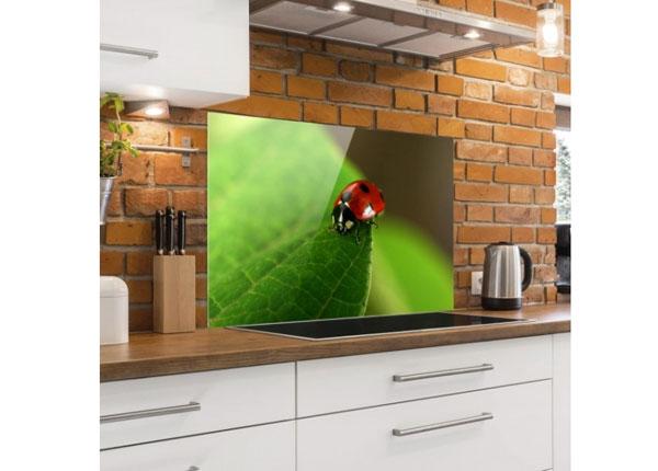 Fotoklaas, köögi tagasein Ladybird 40x60 cm