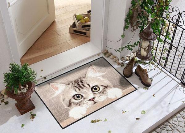 Uksematt Nosy Cat 50x75 cm A5-129644