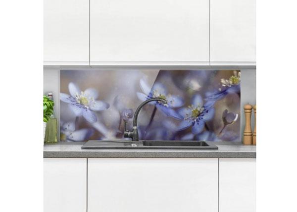 Fotoklaas, köögi tagasein Anemones In Blue 40x60 cm