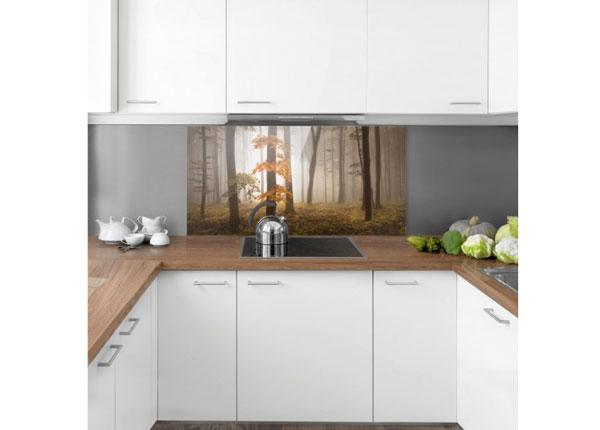 Fotoklaas, köögi tagasein November Forest 40x80 cm