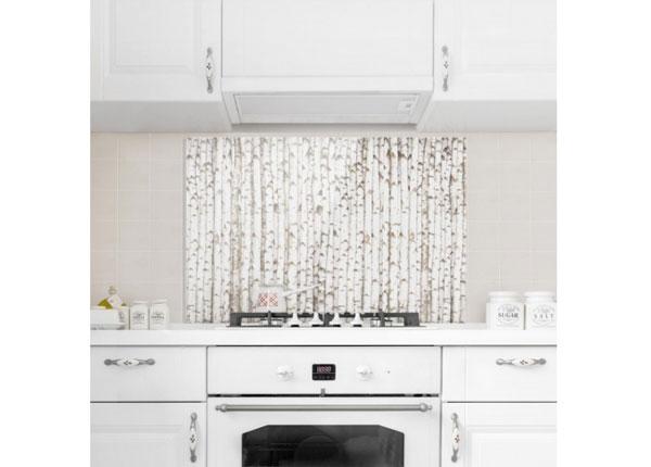 Fotoklaas, köögi tagasein Birch Wall 40x60 cm