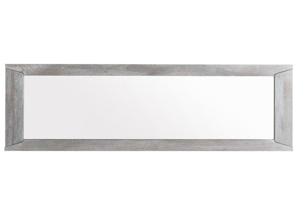 Peegel Titan MA-130906