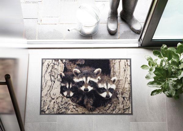 Uksematt Little Racoons 50x75 cm A5-131058