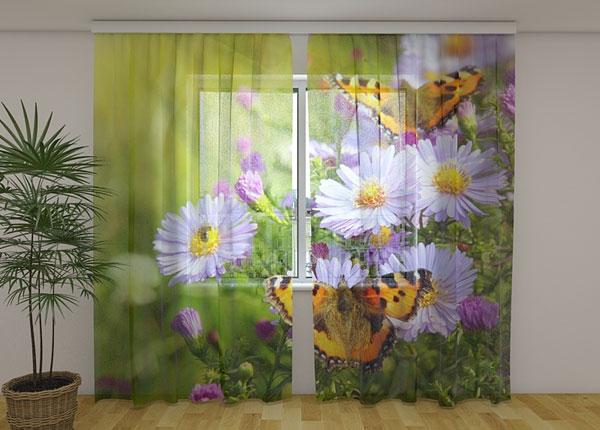 Šifoon-fotokardin Butterflies 240x220 cm ED-131439