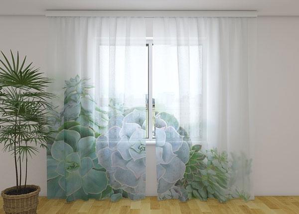 Šifoon-fotokardin Green Succulent Plants 240x220 cm ED-131453